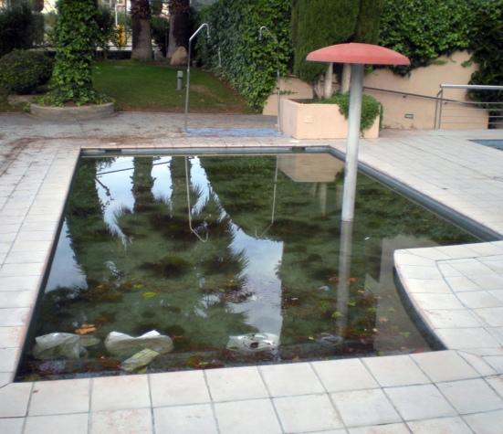mosquitos-piscina-hotel-2012-01
