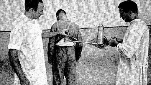 Aplicación de DDT a un preso mediante un espolvoreador.
