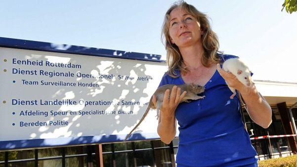Monique Hamerslag la entrenadora de ratas de Rotterdam./ Bas Czerwinski/EPA