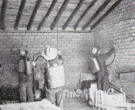 Foto 3. Desinsectación de establos. Página 44.