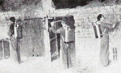 Foto 4. Desinsectación de establos. Página 44.