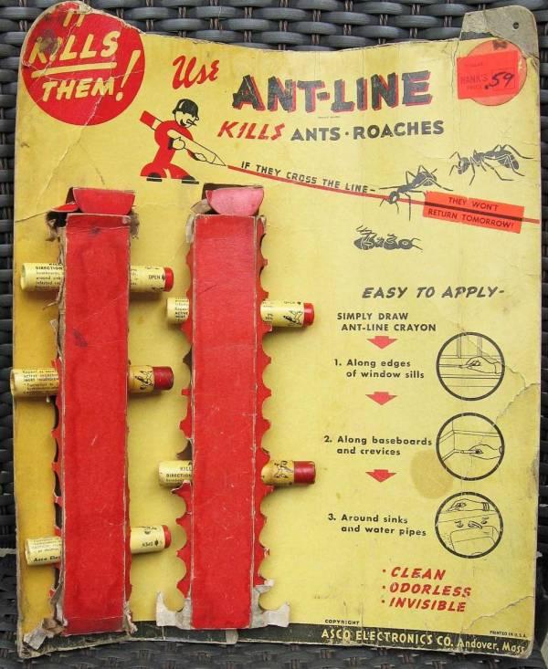 ant-line-03