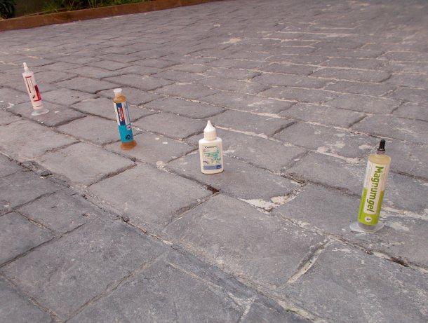 Fig 1. Los cuatro geles aplicados sobre una columna de hormigas./ Desinsectador 07-2014
