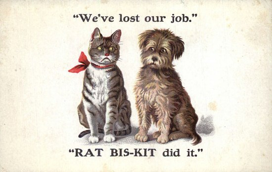 rat-bis-kit