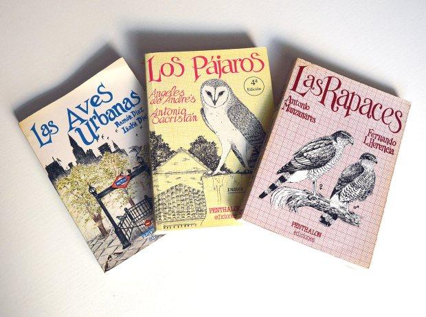 aves-urbanas-diaz-diez-1985-07