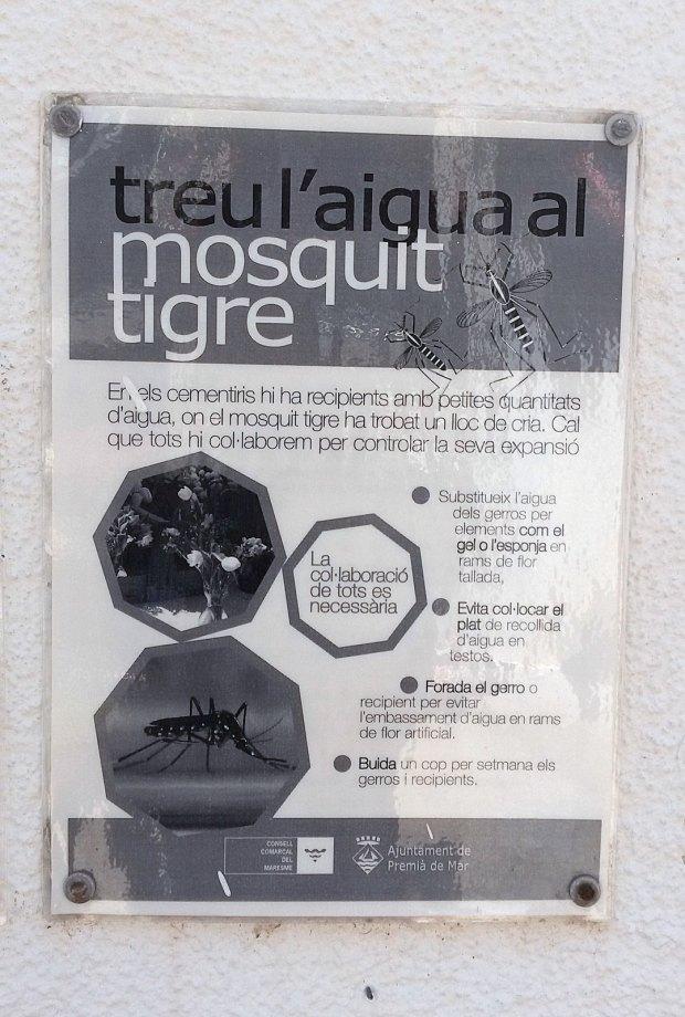 mosquit-tigre-cartell-2015-premia-de-mar