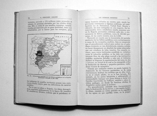 parasitos-emilio-fernandez-galiano-1943-pp70-71