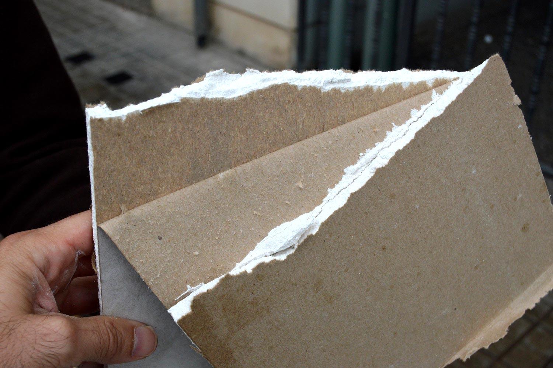 Sobre el cart n yeso y las plagas el desinsectador y desratizador - Placas de yeso para pared ...